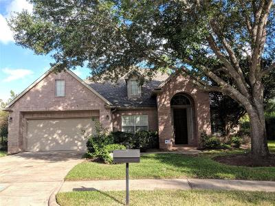 Sugar Land Single Family Home For Sale: 406 Brook Shore Court