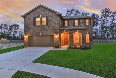 Porter Single Family Home For Sale: 20522 Heath House