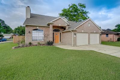 Katy Single Family Home For Sale: 131 Buckeye Drive