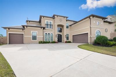 Katy Single Family Home For Sale: 26807 26807 Mesquite Orchard Lane