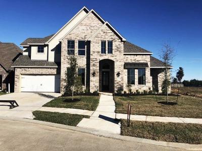 League City Single Family Home For Sale: 1703 Garden Point Lane