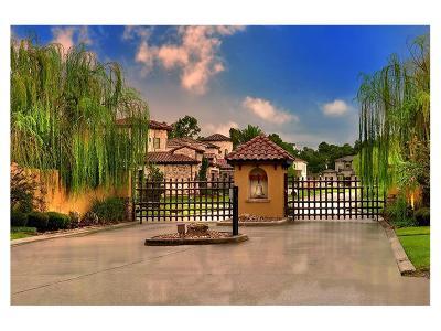 Shenandoah Single Family Home For Sale: 1451 Torrijos Court