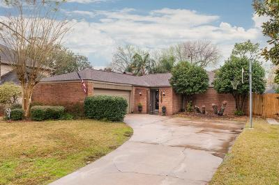 Houston Single Family Home For Sale: 16387 Larkfield Drive