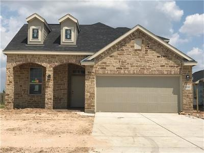 Fulshear Single Family Home For Sale: 29046 Crystal Rose Lane