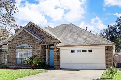 Houston Single Family Home For Sale: 3803 Addicks Clodine Road