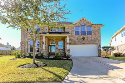 Lakes Of Savannah Single Family Home For Sale: 5413 Autumn Leaf Court