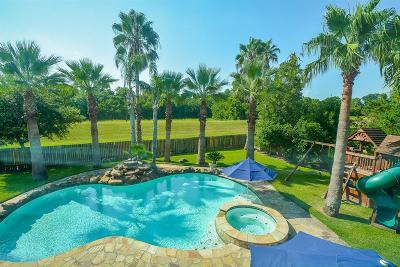 Sugar Land Single Family Home For Sale: 3903 Garnet Falls