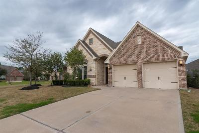 Pearland Single Family Home For Sale: 13803 Juniper Springs Drive