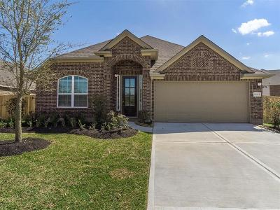 Tomball Single Family Home For Sale: 12123 Brighton Brook Lane