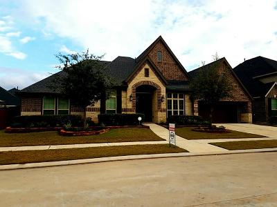 Katy Single Family Home For Sale: 1822 Rice Mill Drive