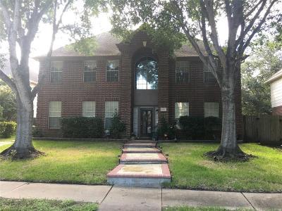 League City Single Family Home For Sale: 2107 Castle Beach Court