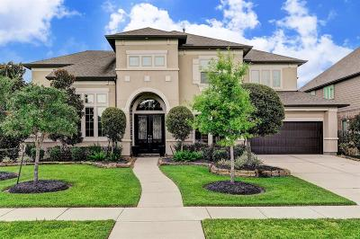 Friendswood Single Family Home For Sale: 1105 Hackberry Branch Lane