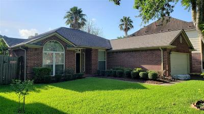 Fort Bend County Single Family Home For Sale: 1215 Mountain Lake Drive