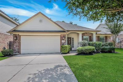 Houston Single Family Home For Sale: 13706 Windsor Garden Lane