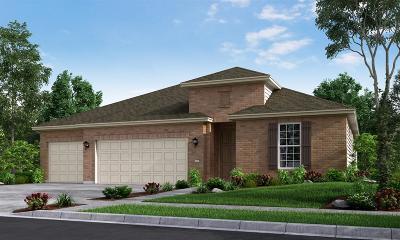 League City Single Family Home For Sale: 2303 Trocadero Lane