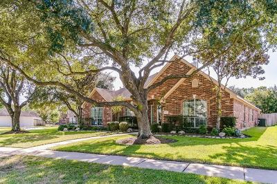 Houston Single Family Home For Sale: 8807 Sunny Ridge Drive