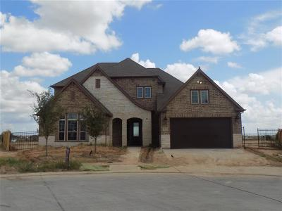 Fulshear Single Family Home For Sale: 2601 Blue Aster