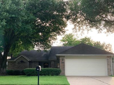 Houston Single Family Home For Sale: 9807 Paddock Park Drive