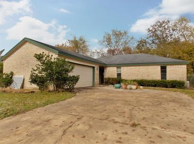 Houston Single Family Home For Sale: 17514 Sundrop Lane
