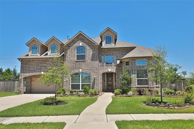 Tomball Single Family Home For Sale: 13602 Butterfly Bush Lane
