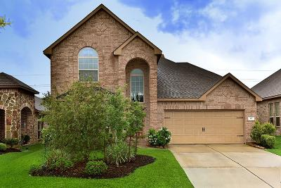 The Woodlands Single Family Home For Sale: 67 Sagamore Ridge