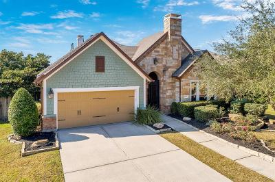 Katy Single Family Home For Sale: 10107 Terrance Springs Lane