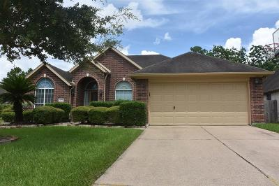 Pearland Single Family Home For Sale: 3207 Chappelwood Drive