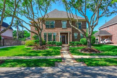 Sugar Land Single Family Home For Sale: 38 Twin Valley Drive