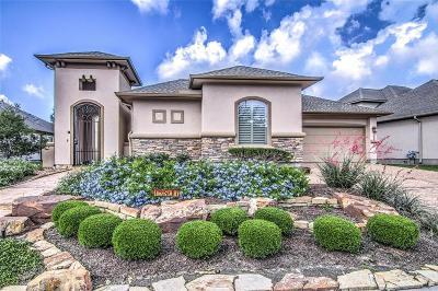 Cypress Single Family Home For Sale: 13807 San Saba Canyon Lane