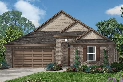 Conroe Single Family Home For Sale: 2079 Parnevik Place