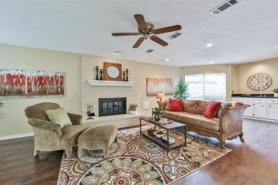 Sugar Land Single Family Home For Sale: 1010 Sugar Mountain Court