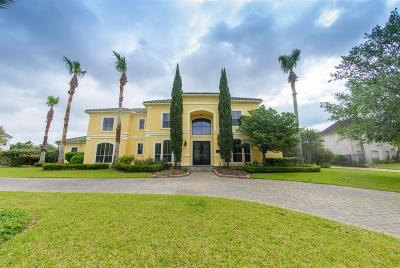 Katy Single Family Home For Sale: 2615 Silverhorn Drive