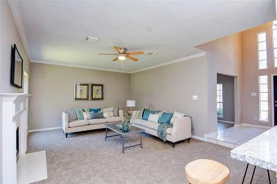 Memorial Northwest Single Family Home For Sale: 16903 Shadow Valley Drive