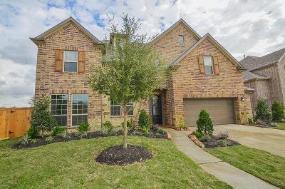 Katy Single Family Home For Sale: 6718 Birchwood Bend Court