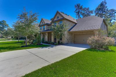 Single Family Home For Sale: 6011 Terravita Drive