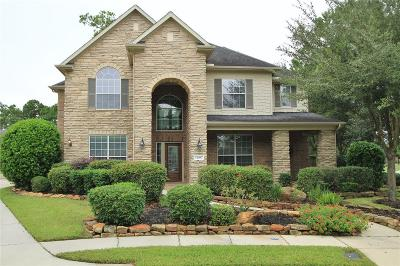 Eagle Springs Single Family Home For Sale: 12007 Tower Falls Court