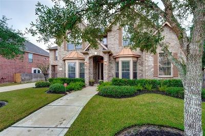 Katy Single Family Home For Sale: 25314 Greenwell Springs Lane