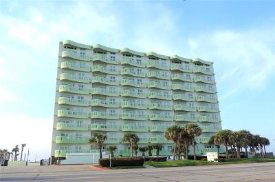 Galveston Mid/High-Rise For Sale: 9420 Seawall Boulevard #406