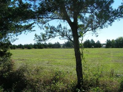 Cat Spring Farm & Ranch For Sale: 12001 Frantz Road