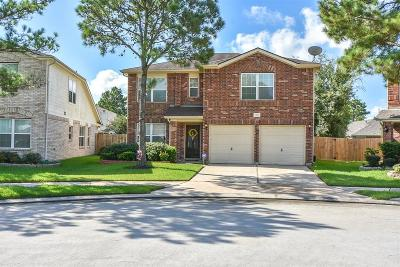 Tomball Single Family Home For Sale: 11827 Skydale Drive