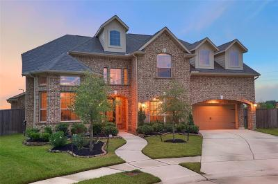 Tomball Single Family Home For Sale: 13630 Butterfly Bush Lane