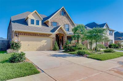 Katy Single Family Home For Sale: 26918 Soapstone Terrace Lane