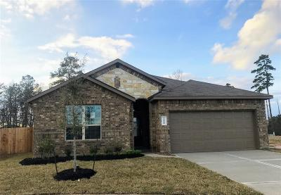 Spring Single Family Home For Sale: 24411 Hollow Gate Meadow Court