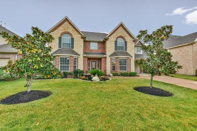 Single Family Home For Sale: 27234 Windy Grove Lane