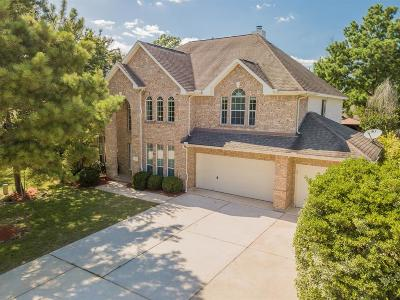 Conroe Single Family Home For Sale: 963 Stoneglade Drive