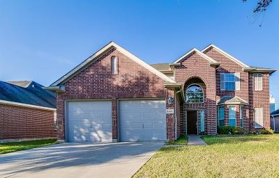 Sugar Land Single Family Home For Sale: 14202 Silver Glade Lane