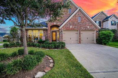 Katy Single Family Home For Sale: 29203 Bentford Manor Court