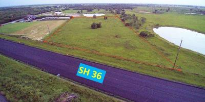 Sealy Residential Lots & Land For Sale: 0000 Hwy 36 S Highway