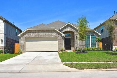 Rosharon Single Family Home For Sale: 13831 Sandstone Bridge Lane