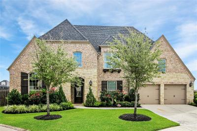 Katy Single Family Home For Sale: 29202 Dalea Court